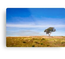 Tree Scape Metal Print