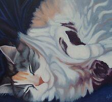 Baby in Velvet by Suzanne Glenning