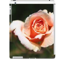 A Rose of Peach iPad Case/Skin