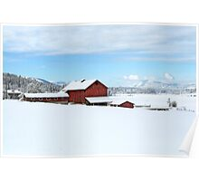 COUNTRY BARNS Poster