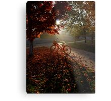 Morning Cruise Metal Print