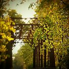 iron bridge series by Severin