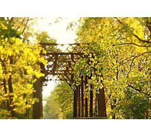iron bridge in the fall Photographic Print