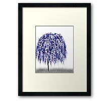 Blue Willow Tree Framed Print