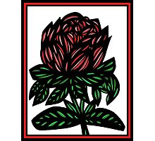 Mythopoeic Flowers Red Green White Photographic Print