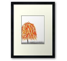Orange Willow Tree Framed Print