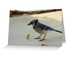 Levitation II Greeting Card