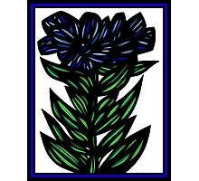 Inundate Flowers Blue Green White Photographic Print