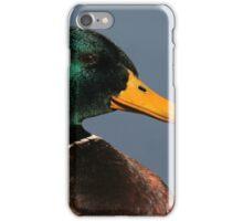 Portrait of a Mallard Drake iPhone Case/Skin