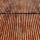 Rusty Roof  by Ethna Gillespie