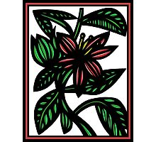 Susurrous Flowers Red Green White Photographic Print