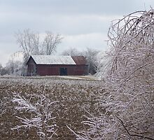 Ice Barn by Severin