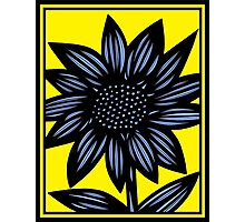 Clandestine Flowers Yellow Blue Black Photographic Print