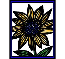 Cloister Flowers Blue Yellow White Photographic Print