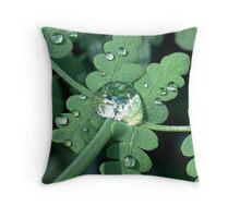 Rain Drops 2 in Tarra-Bulga Throw Pillow