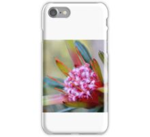 Australian Honey Flower iPhone Case/Skin