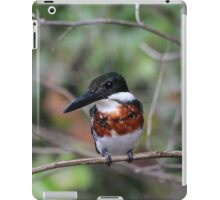 Green Kingfisher-Male iPad Case/Skin