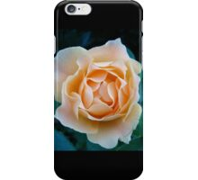 Peach Rose~ iPhone Case/Skin