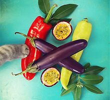 Chilli Paw by Odette Angelica