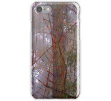Spiderweb in the mist iPhone Case/Skin
