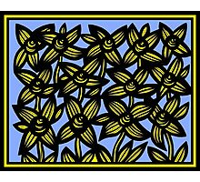 Ambrosia Flowers Blue Yellow Black Photographic Print