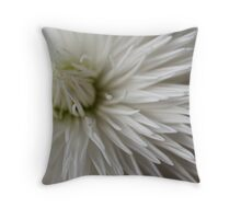 Whiteness Throw Pillow