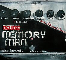 EHX Memory Man Deluxe by JamesPeart