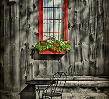 A Seat For One by Evelina Kremsdorf