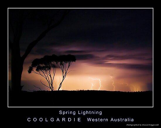 Spring Lightning by Daniel Fitzgerald