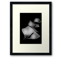 Rooms for the memory Framed Print