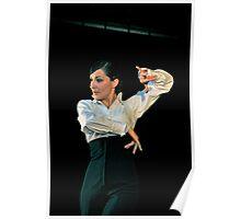 flamenco dangerous Poster