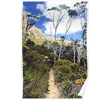 Gums on Cradle Mountain Poster
