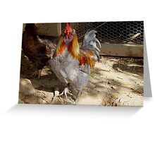 Rainbow Roo and chicken friend Greeting Card