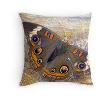 Poor Buckeye Butterfly!! :( Throw Pillow