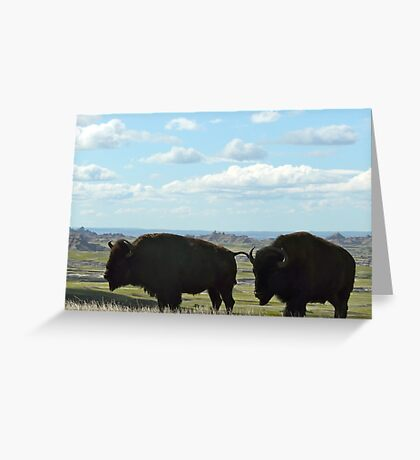 Two Bison on the Plains  Greeting Card