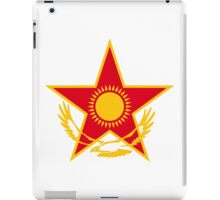 Roundel of Kazakhstan Air Force  iPad Case/Skin