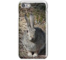 Bunny Rabbit in the Forest iPhone Case/Skin