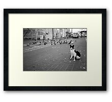 i'm here for business and pleasure Framed Print