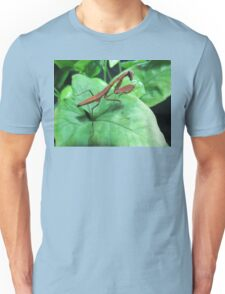 Rare Red Mantis Nymph (Prohierodula picta) T-Shirt