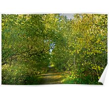 Autum Greenery Poster