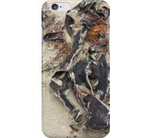 sea sculptures  iPhone Case/Skin