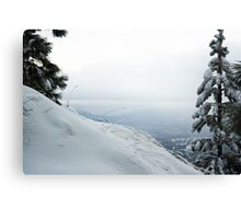 The Snow Canvas Print