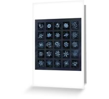 Snowflake collage - Season 2013 dark crystals Greeting Card