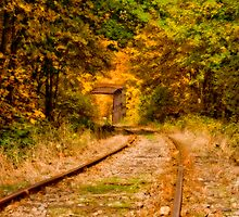 AUTUMN TRACKS by Sandy Stewart
