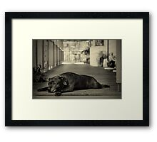 Sometimes I Just Feel so Old Framed Print