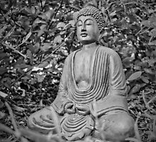 Morning Meditation by digitalpharaoh