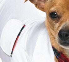 Dog in skirt Sticker