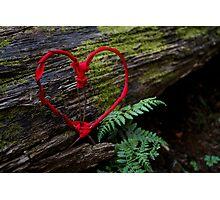 Romance of Nature - Valentine Heart Card / Print Photographic Print