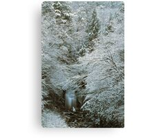 MEIGS FALLS,WINTER,GREAT SMOKY MOUNTAINS NP Canvas Print