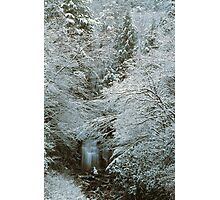 MEIGS FALLS,WINTER,GREAT SMOKY MOUNTAINS NP Photographic Print